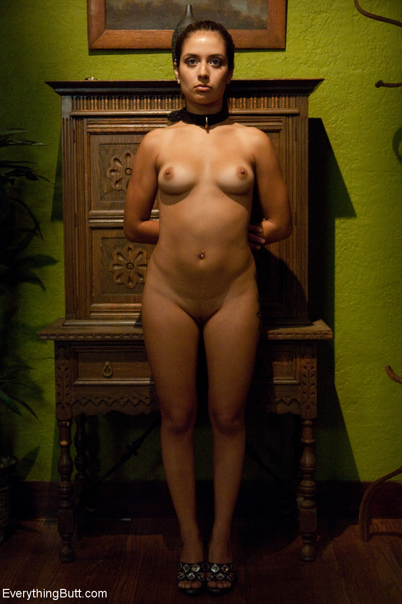 Analsex Pornofotos. Galerie - 853. Foto - 1