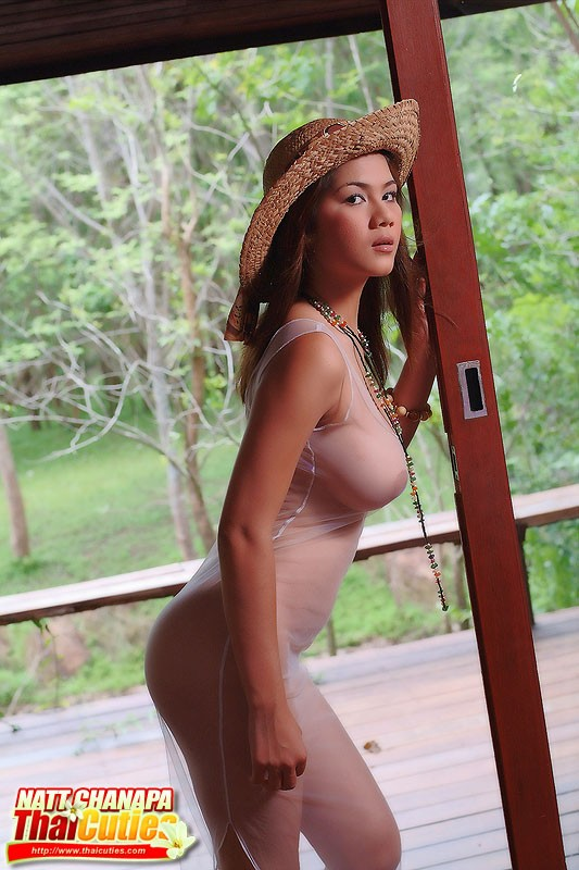 Asian porn. Gallery - 1268. Photo - 12
