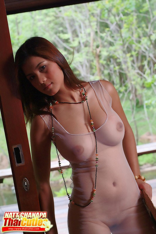 Asian porn. Gallery - 1268. Photo - 15