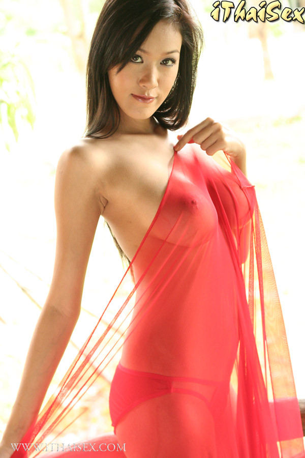 Asian porn. Gallery - 277. Photo - 11