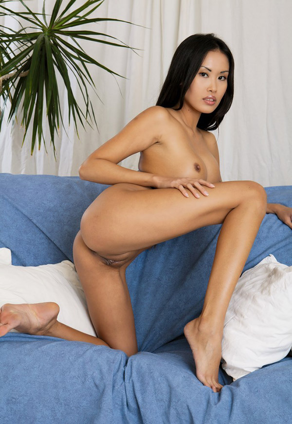 Asian porn. Gallery - 328. Photo - 16