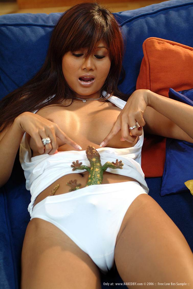Asian porn. Gallery - 340. Photo - 5