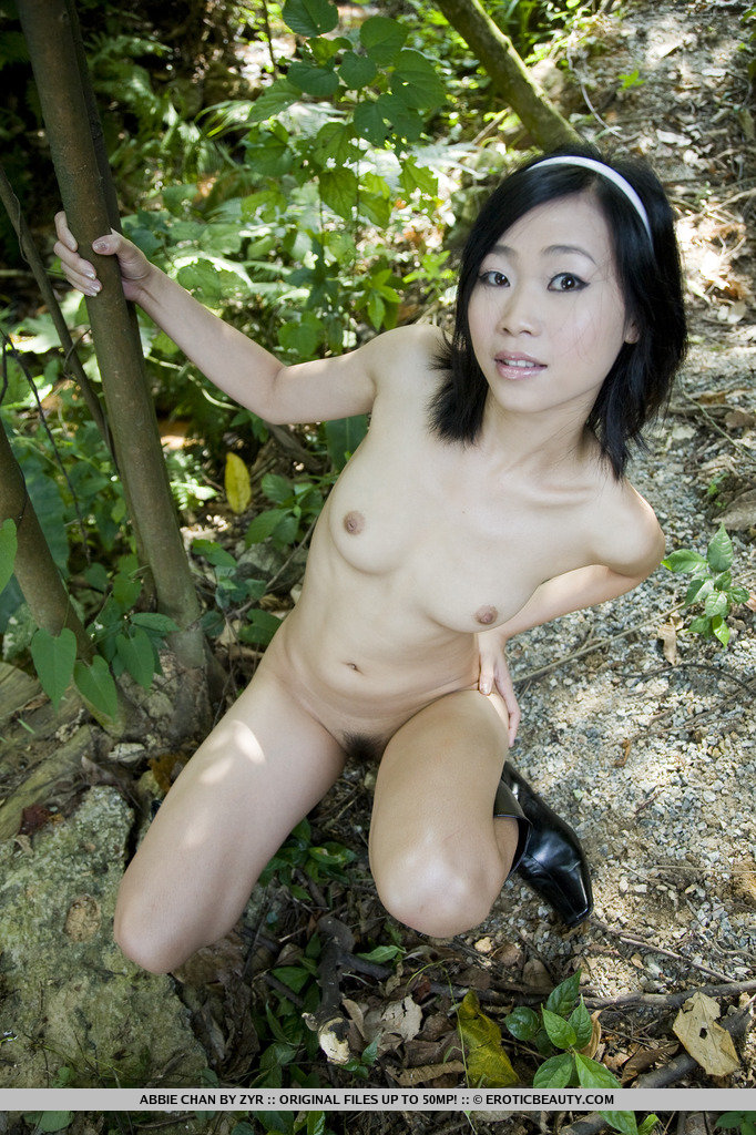 Asian porn. Gallery - 544. Photo - 14