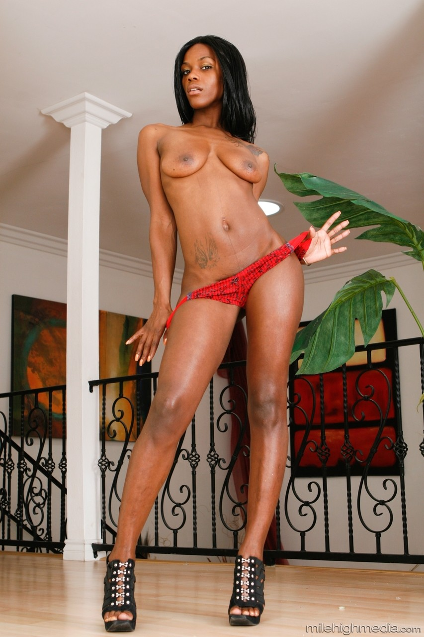 Ebony and black porn. Gallery - 1053. Photo - 13