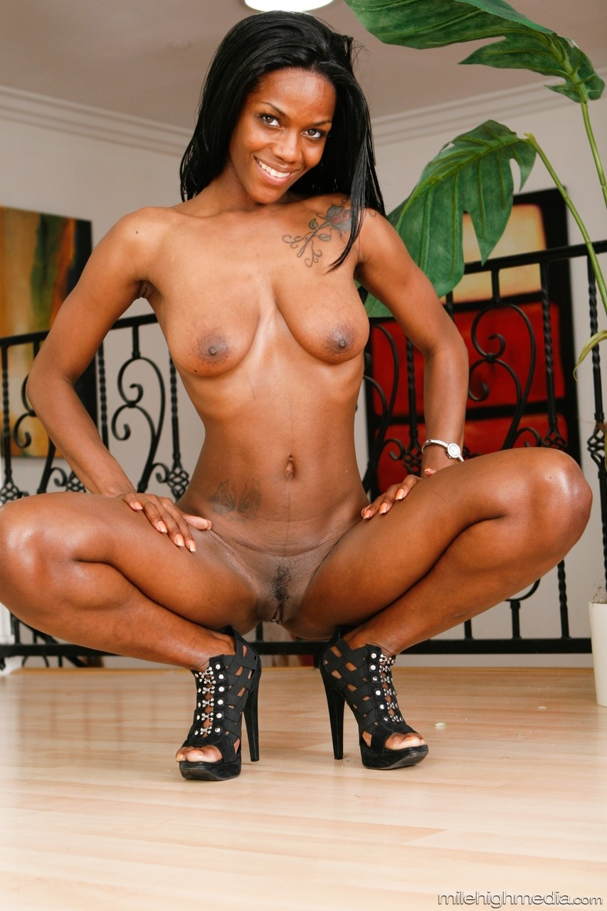 Ebony and black porn. Gallery - 1053. Photo - 18