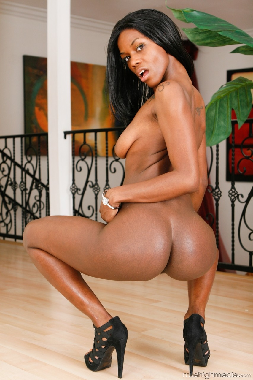 Ebony and black porn. Gallery - 1053. Photo - 20