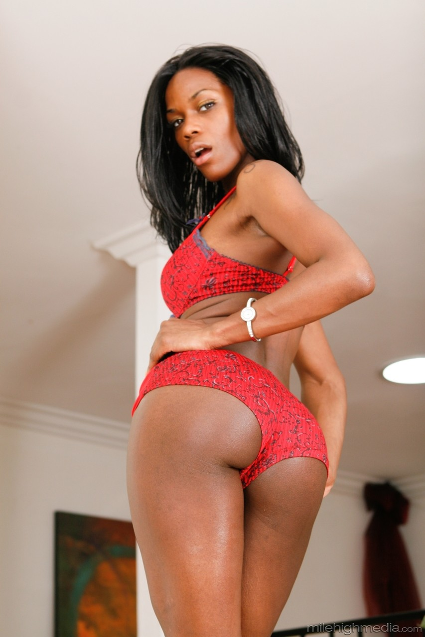 Ebony and black porn. Gallery - 1053. Photo - 4