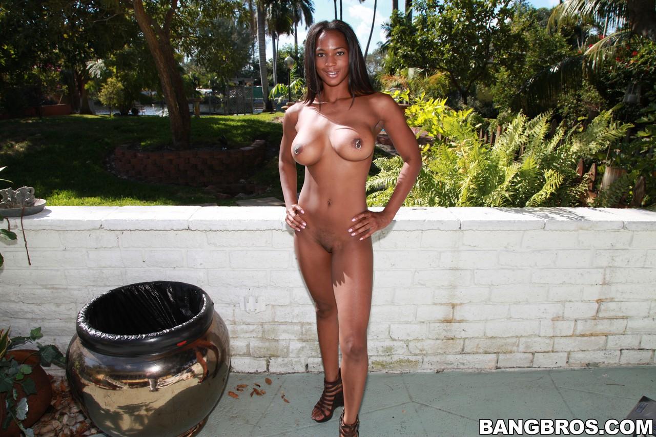 Ebony and black porn. Gallery - 1171. Photo - 12