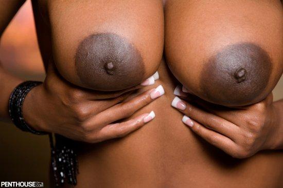 Ebony and black porn. Gallery - 278. Photo - 10