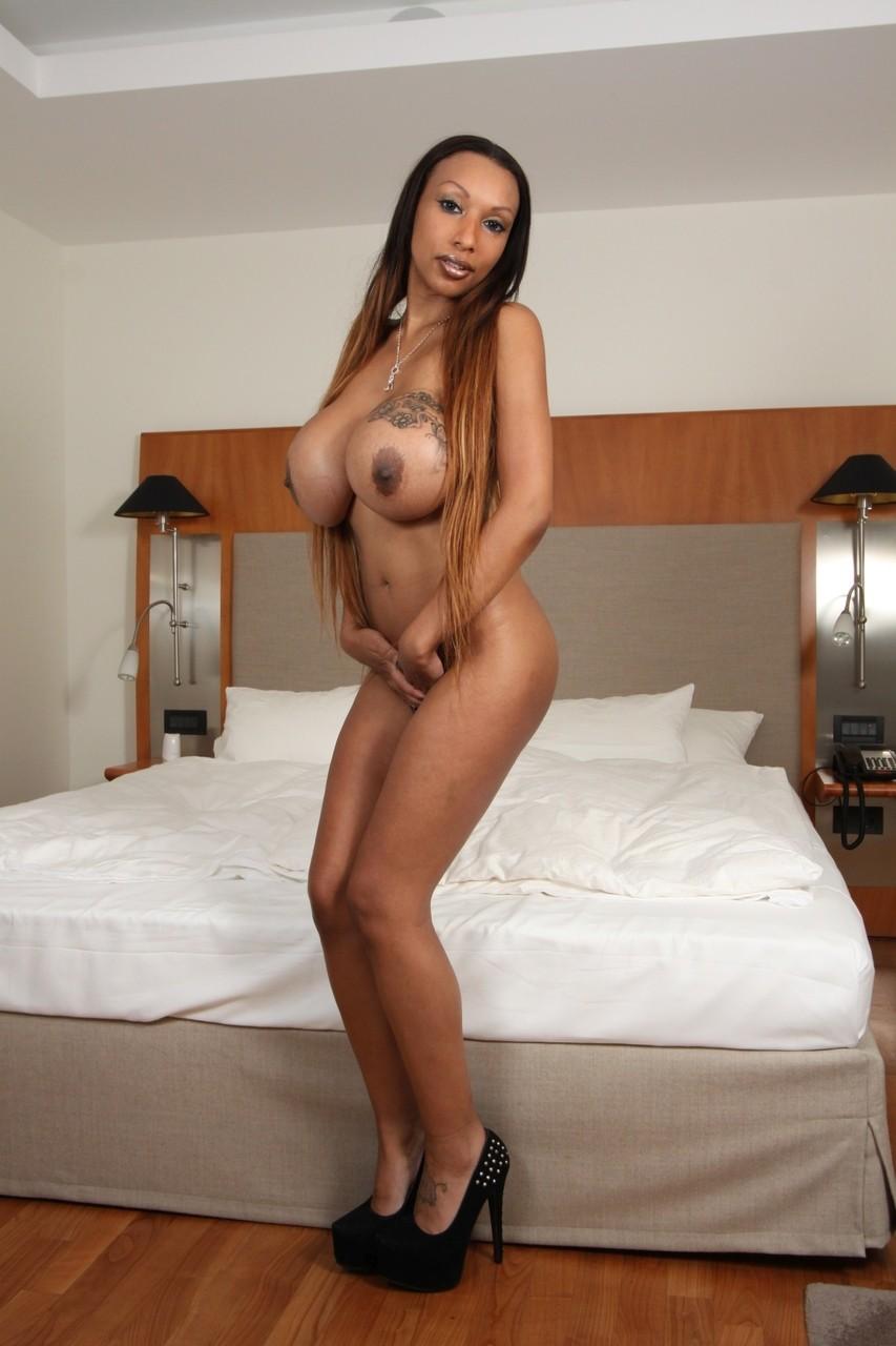 Ebony and black porn. Gallery - 340. Photo - 2