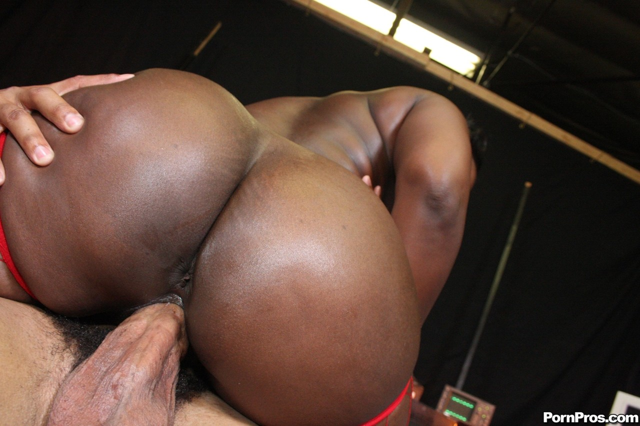 Ebony and black porn. Gallery - 496. Photo - 12