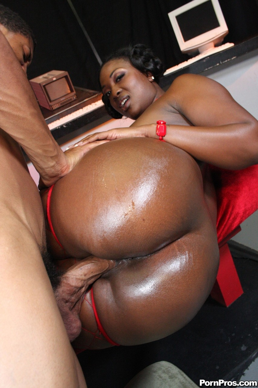Ebony and black porn. Gallery - 496. Photo - 14