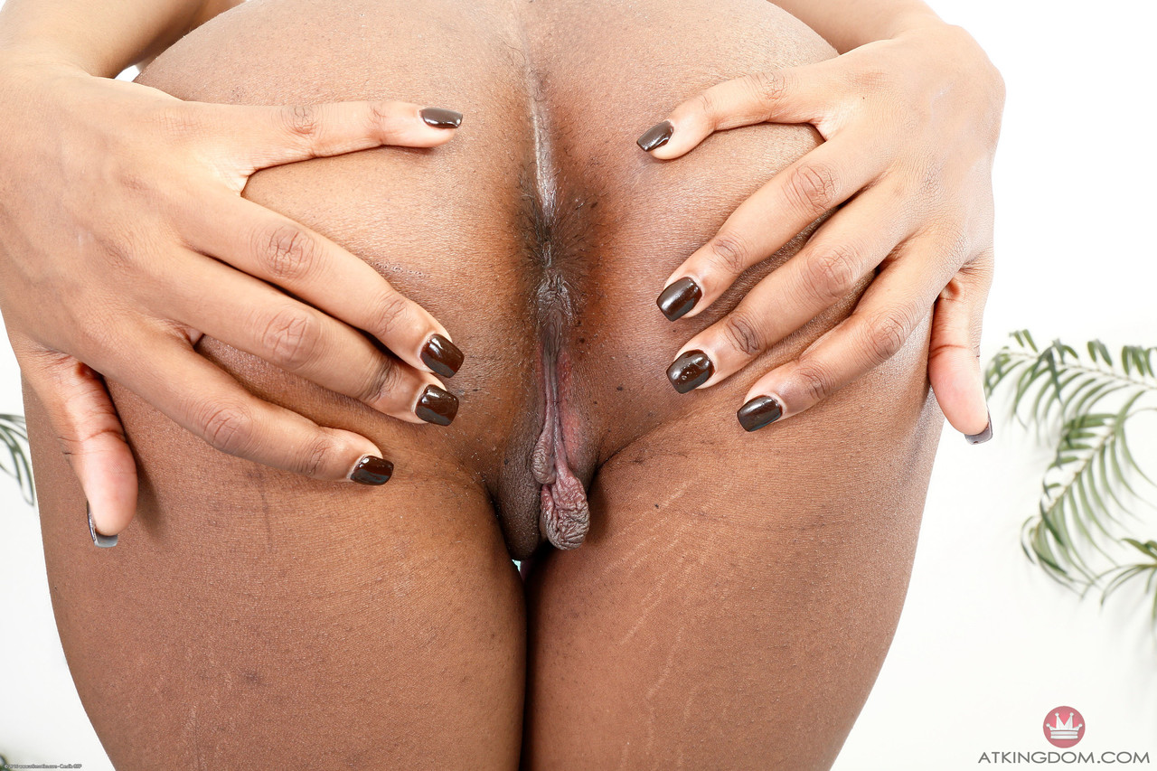 Ebony and black porn. Gallery - 522. Photo - 9
