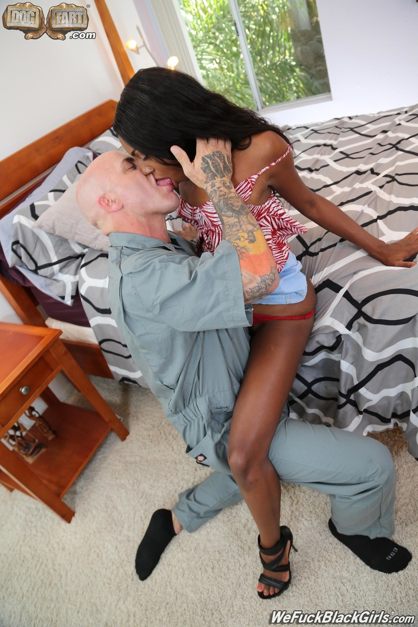 Ebony and black porn. Gallery - 525. Photo - 10