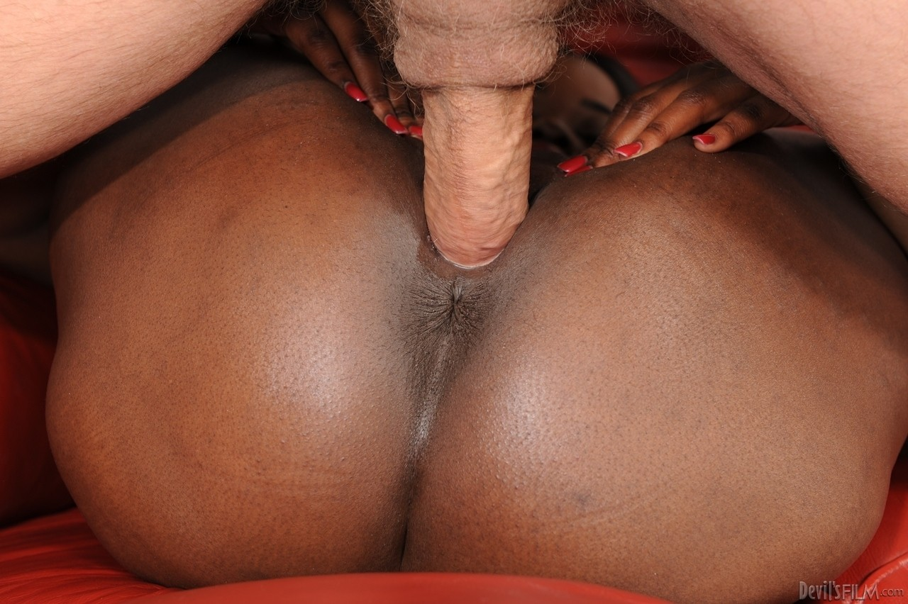 Ebony and black porn. Gallery - 555. Photo - 11