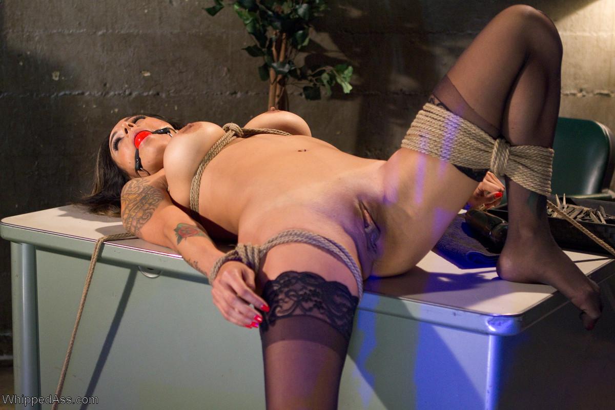 Lesbian porn. Gallery - 1234. Photo - 1
