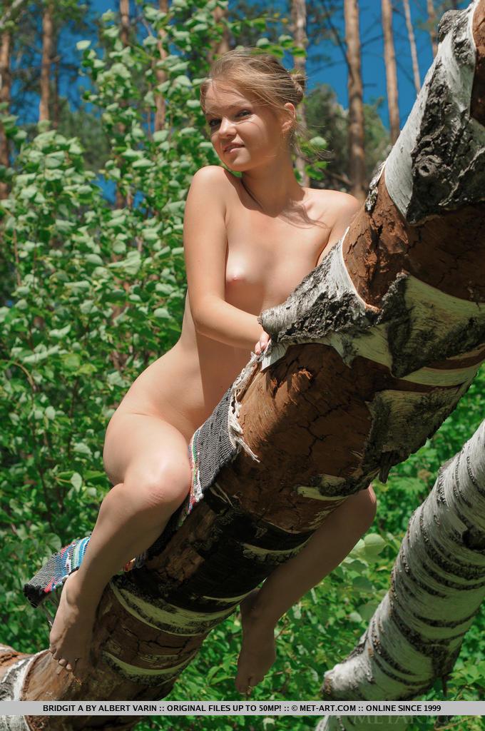 Фотки голой тинки на березе. Фото - 15