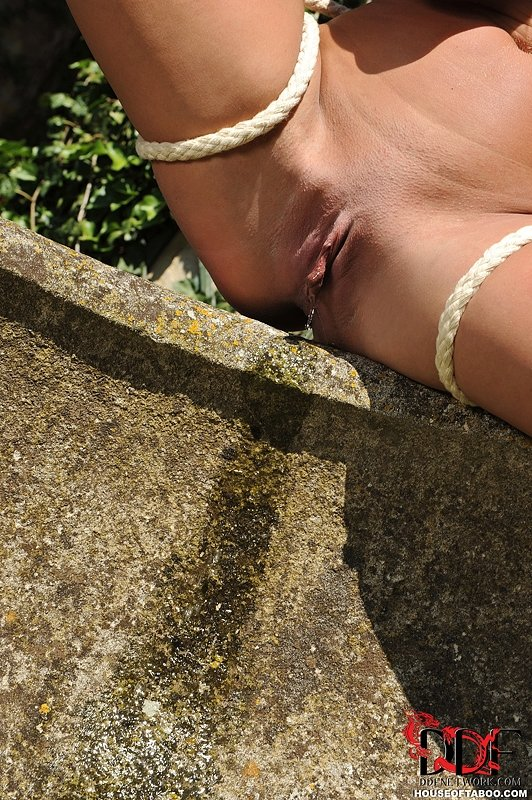 Pissing. Gallery - 1118. Photo - 12