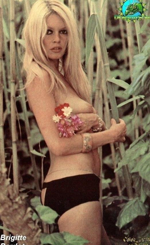 Brigitte Bardot Nackt. Foto - 21